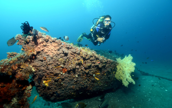 Another Wreck done by Dive Society Dauin