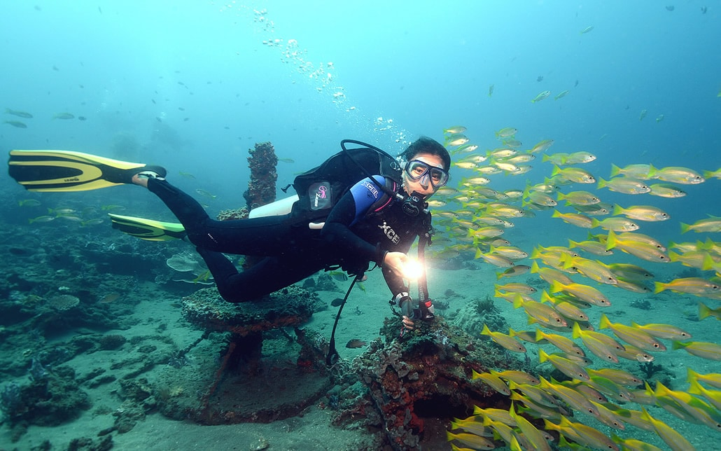Underwater Paradise Dive Society Dauin