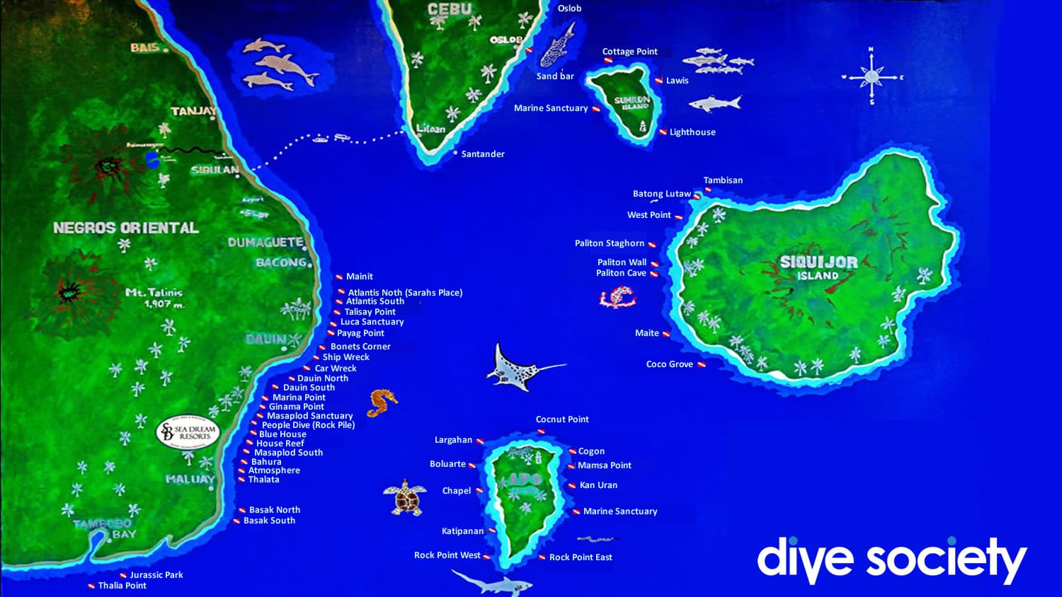 Dive Spots of Dauin and the surrounding area